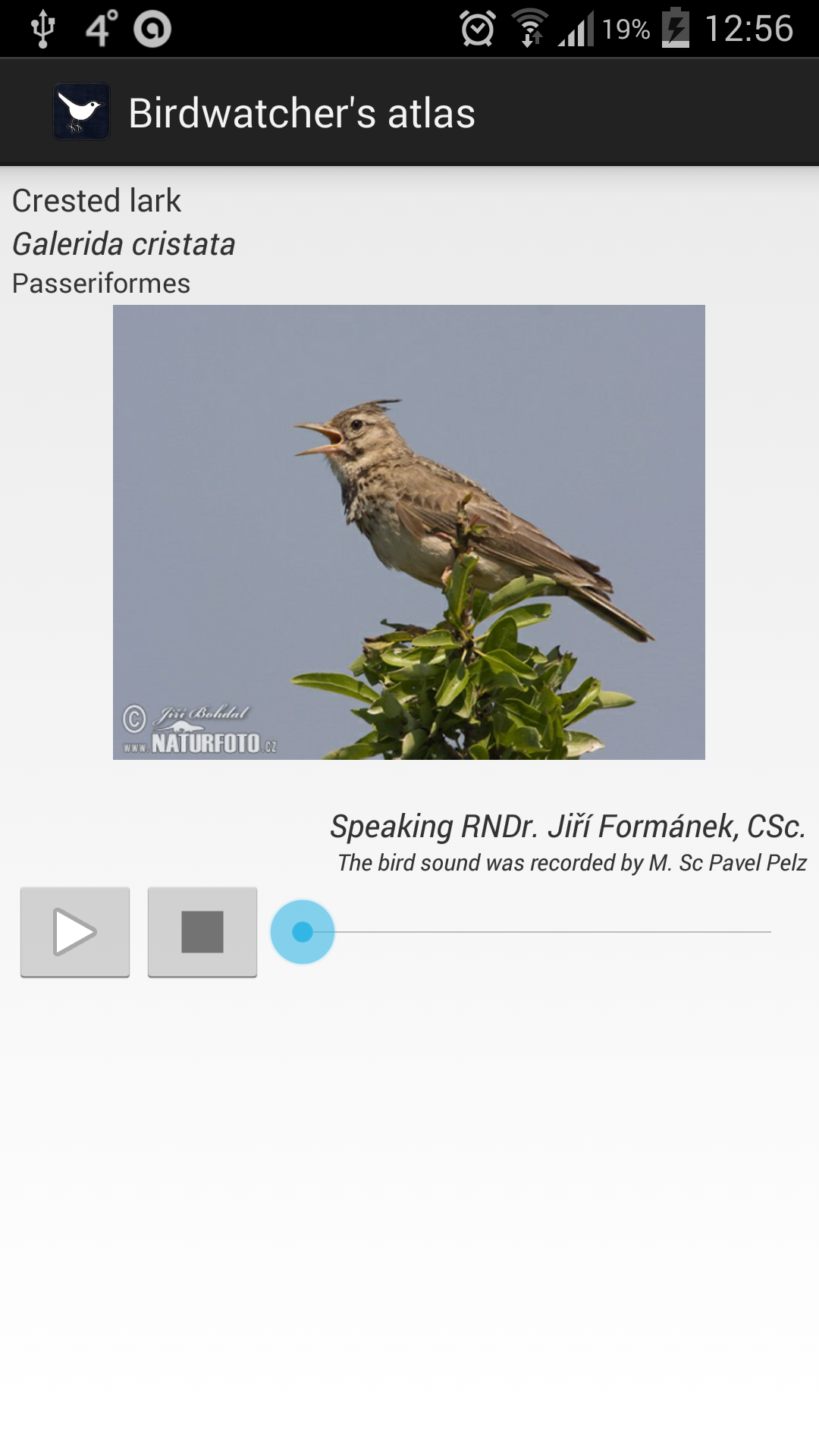Atlas of a birdwatcher