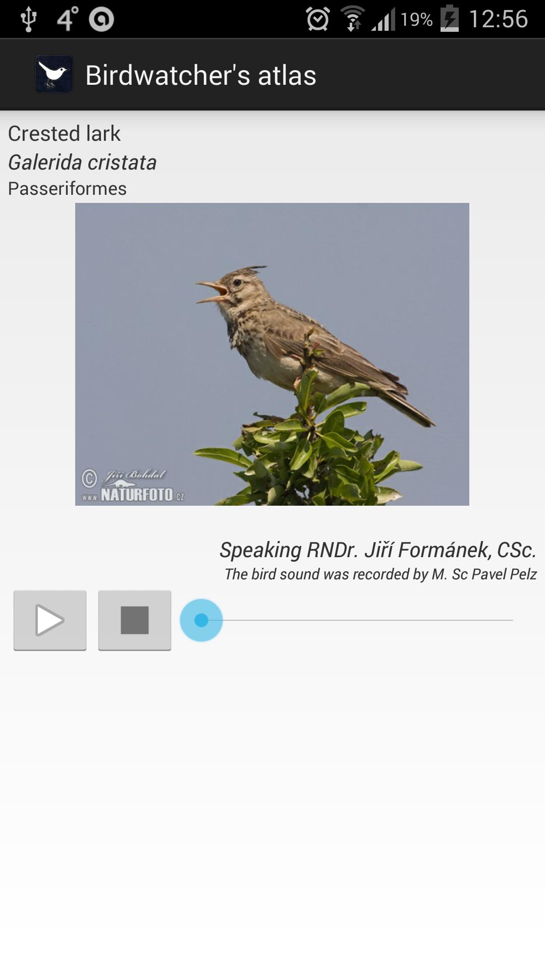Atlas of a birdwatcher