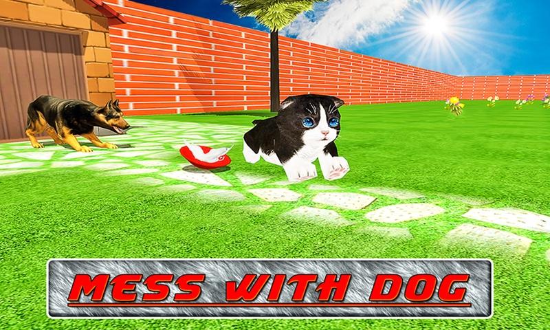 Cat Craze 3D