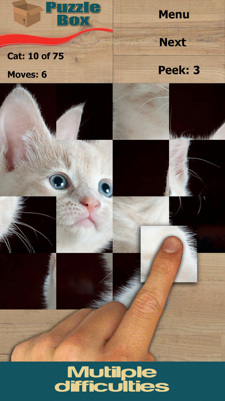 Cats & Kittens: Puzzle Box