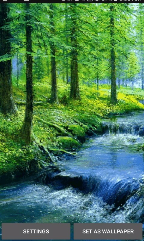 Nature Forest River LWP
