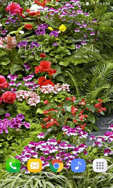 Beautiful Flowers LWP