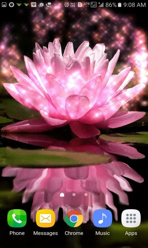 Magical Pink Flower LWP