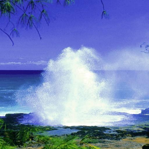 Ocean Fountain Beauty LWP