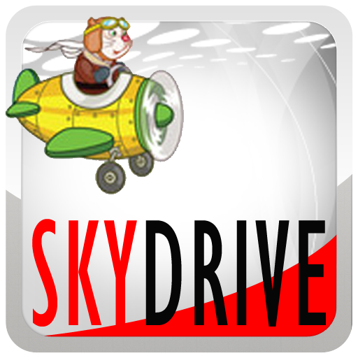 Sky Drive Angry Cat