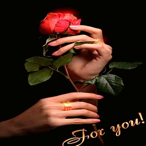 Valentine Rose LWP